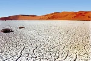 gebarsten grond, heul droog