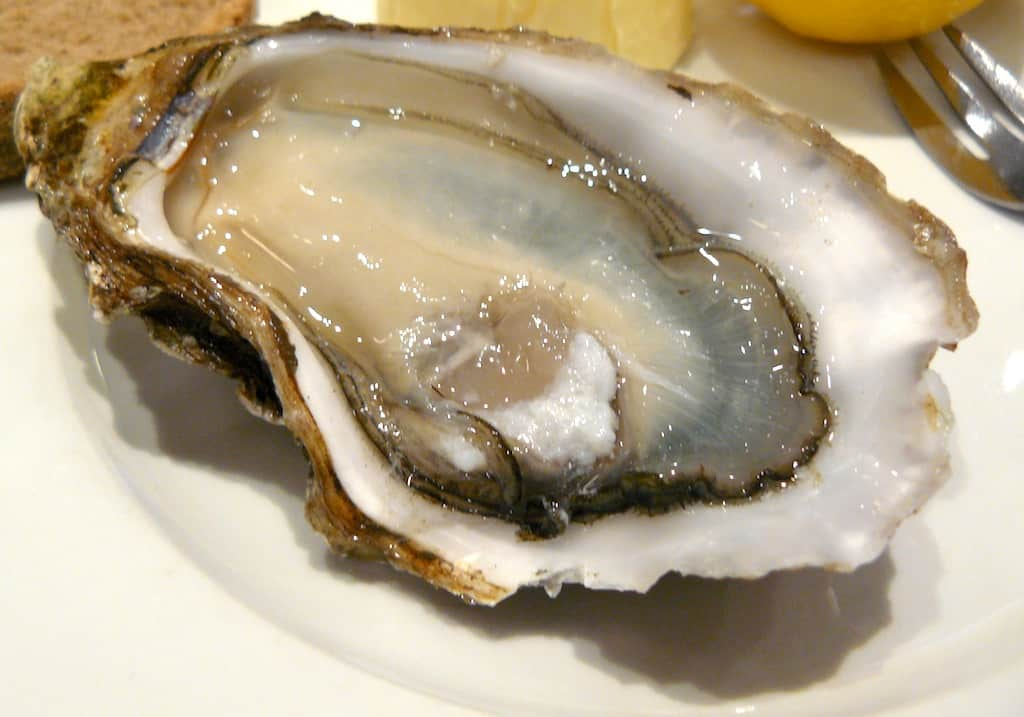 Umami oester