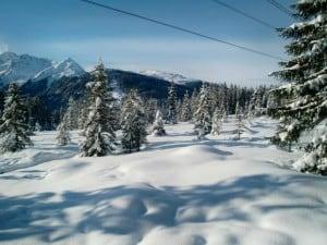 Maagdelijke sneeuw